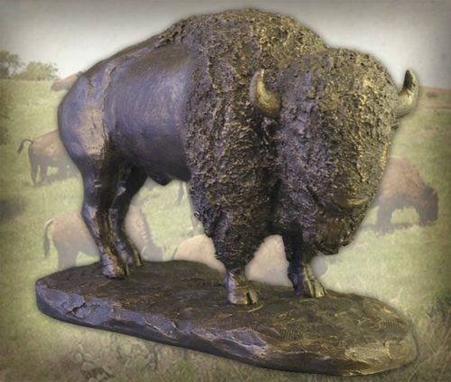 Am Bison No Plaque